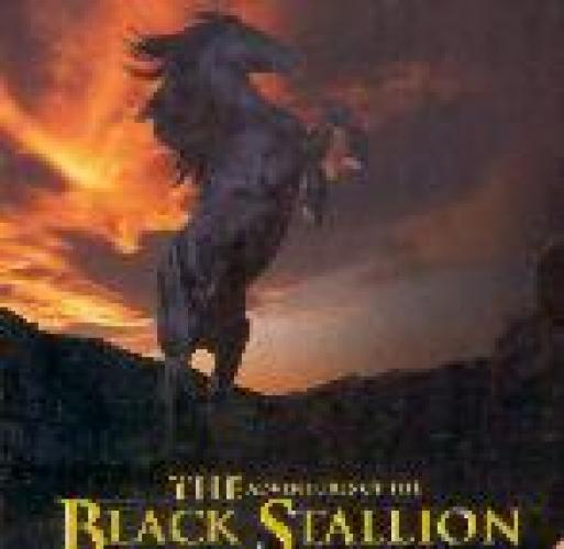 The Adventures of the Black Stallion next episode air date poster