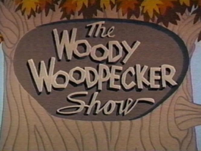 The Woody Woodpecker Show next episode air date poster