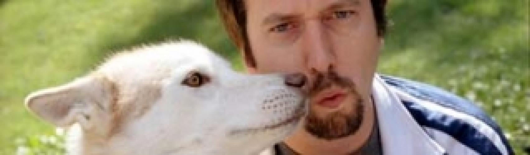 The New Tom Green Show next episode air date poster