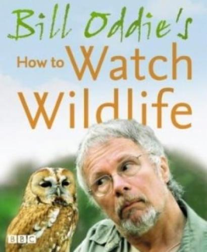 Bill Oddie's How to Watch Wildlife next episode air date poster