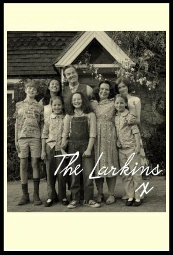 The Larkins next episode air date poster