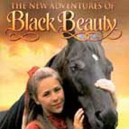 The New Adventures of Black Beauty next episode air date poster
