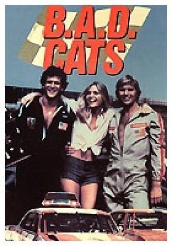 B A D Cats Season 1 Air Dates Countdown